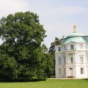 Alteichen am Bellvedere im Schlossgarten Charlottenburg. © N. A. Klöhn
