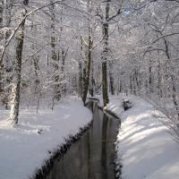 Panke im Winter © A. von Lührte