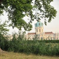 Blick über den Karpfenteich zum Schloss. © N. A. Klöhn