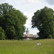 Schlossgarten Charlottenburg: Wiesenblick auf das Schloss © A. von Lührte
