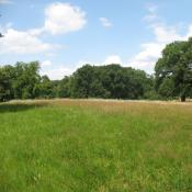 Artenreiche Magerwiese im Glienicker Park © A. von Lührte