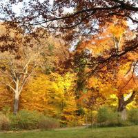 Herbststimmung. © B. Seitz