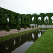Linden-Arkaden im Schwetzinger Schlossgarten © N. A. Klöhn