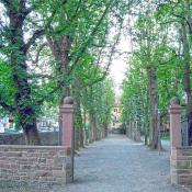Eingang zum Durlacher Schlosspark mit der Kastanienallee. © Beate. Creative commons license.