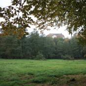 Zustand der Wiese im Herbst 2013. © B. Pätzig