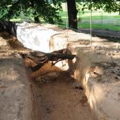 Schlitzung des alten Deiches: Wurzeln alter Bäume wurden vorsichtig freigelegt und während der Bauarbeiten ständig feucht gehalten. © N. A. Klöhn