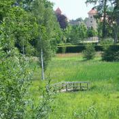 Blick über die Englische Partie zum Schloss Rheinsberg. © SPSG, M. Hopp