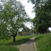 Sommerliche Blumenwiesen vor Schloss Rosenstein © M. Sonnenfroh