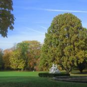 Denkmalgeschützter Landschaftspark mit Altbaumbestand © C. Hartmann