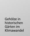 Gehölze in historischen Gärten im Klimawnadel